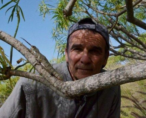 bioloog-Rafael-Garcia-Becerra-palma