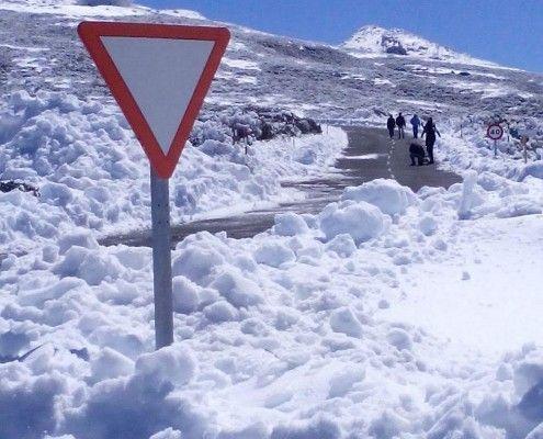 sneeuw-lapalma