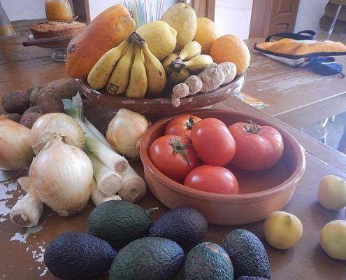 tablado-fruit