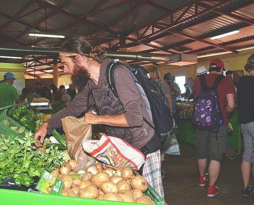markt-puntagorda