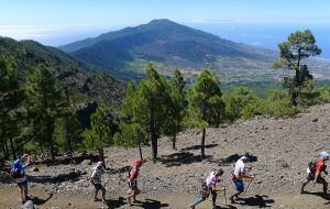 ultramarathon transvulcania 2017